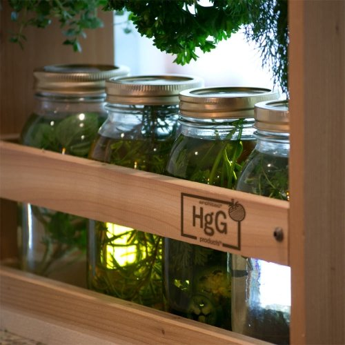 Harvest Drying & Infusion Herb Station