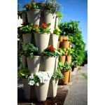 **NEW** GreenStalk Stackable Garden